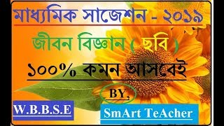MADHYAMIK SUGGESTION 2019 LIFE SCIENCE by Smart Teacher