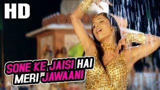 Gambar cover Sone Ke Jaisi Hai Meri Jawaani | Asha Bhosle | Maa Tujhhe Salaam 2002 Songs | Malaika Arora