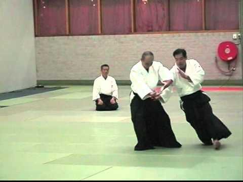 guiding - Shimamoto Shihan Aikido