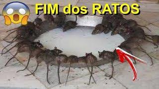 RATOEIRA ELÉTRICA MATA TODOS OS  RATOS (SE INSCREVA NO CANAL PARTICIPE DOS SORTEIOS DOS INSCRITOS) thumbnail