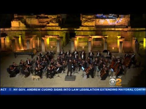 Dog Crashes Outdoor Concert In Turkey