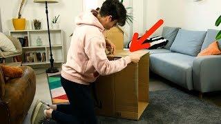 골판지 상자 2개와 거실에서 씨름을 하자, 어른도 아이…