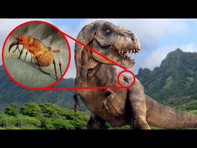 Most SURPRISING Recent Discoveries About DINOSAURS!