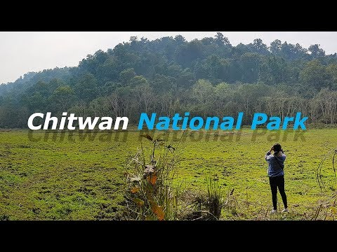 Trip to Chitwan National Park | Sarang Wildlife Sanctuary | Meghauli