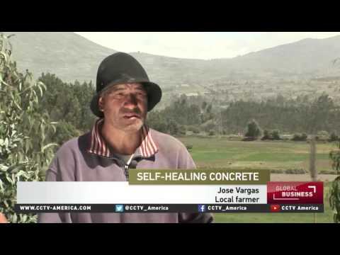 Self-healing concrete tested in Ecuador