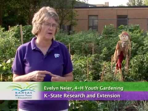 Community Gardens: Sources of Funding