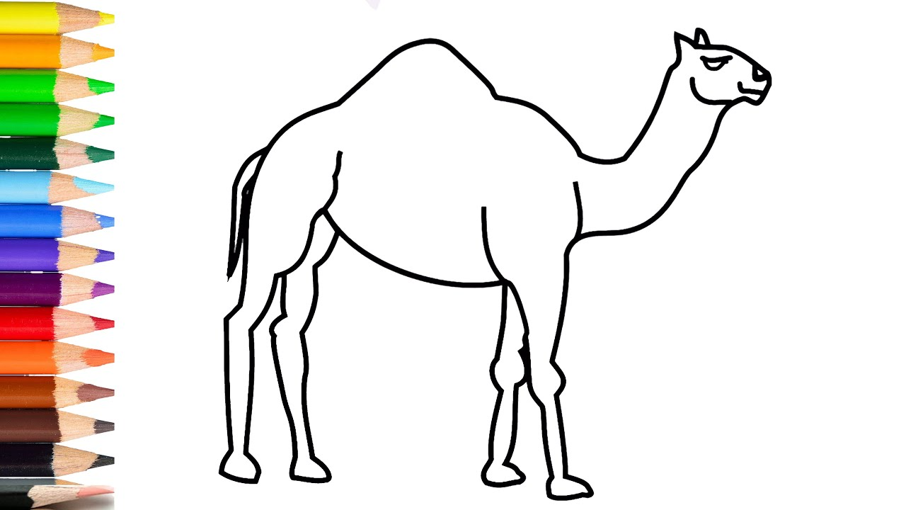 How To Draw A Camel Step By Step For Kids Drawing Camel Very Easy