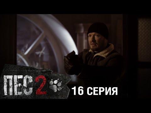 Сериал Пес 1 сезон (1-20 серия) (2015) смотреть онлайн