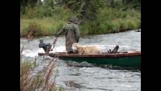 Freighter Canoe (18 ft. X 54 in.) with Copperhead 12hp in Alaska