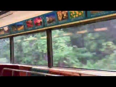伊豆急車窓リゾート21黒船電車 Izukyu Train view The Black Ship Train
