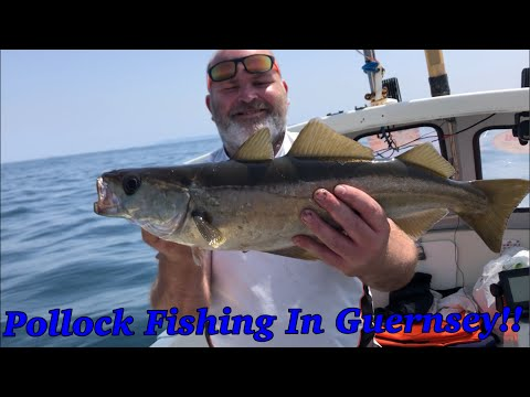 Pollock Fishing In Guernsey 🇬🇬 With Monkey