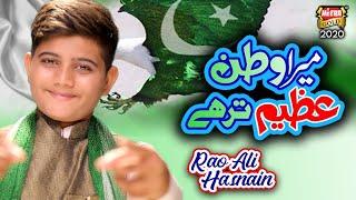 New Mili Naghma 2020 - Rao Ali Hasnain - Mere Watan - Official Video - Heera Gold