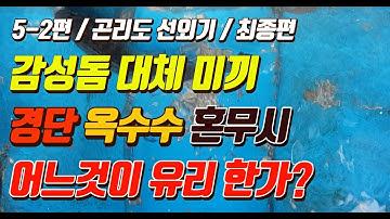 [박과장TV] 5-2편 감성돔 낚시 대체 미끼 뭘로 써야하나?? 옥수수 경단 혼무시 참갯지렁이