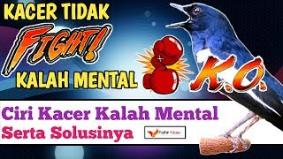 Download Mp3 Kacer Kalah Mental, Ciri Dan Cara Mengatasinya!
