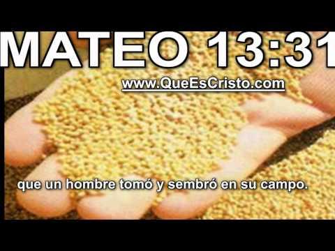 Mateo 13:31 Cristo Jesus en Biblia Parabola TV Jesus Cristo Mateo 13:31 HD Historia from YouTube · Duration:  29 seconds