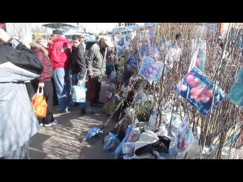 САЖЕНЦЫ ПЛОДОВЫХ ДЕРЕВЬЕВ На Рынке Для САДОВОДОВ И ОГОРОДНИКОВ, Ukraine, Kiev