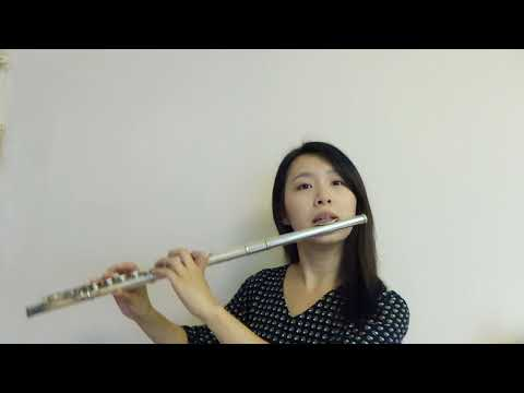 """Under The Sea From """"The Little Mermaid""""-----Flute Cover By Fanny"""