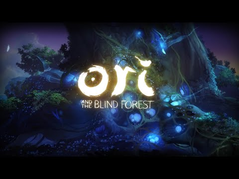 Ori and the Blind Forest Definitive Edition |