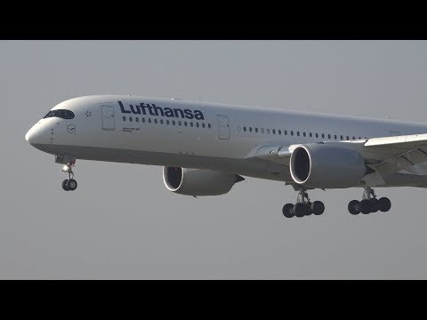 [4K] 20 Minutes of Morning Arrivals at Munich Airport