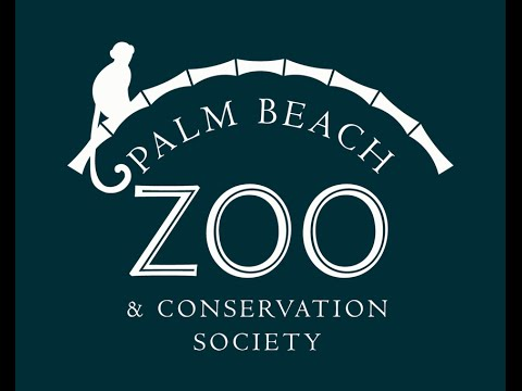 Palm Beach Zoo: Rescue. Rehabilitate. Respect.