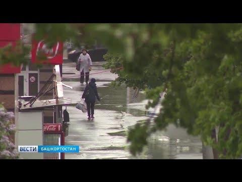 В Башкирию возвращается холодная дождливая осень