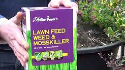 Weekly gardening tips. Week 2