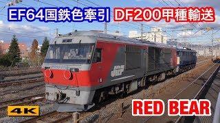 EF64-1028国鉄色牽引 DF200甲種輸送 2017.12.6【4K】