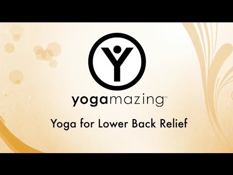 yoga for lower back pain relief  youtube