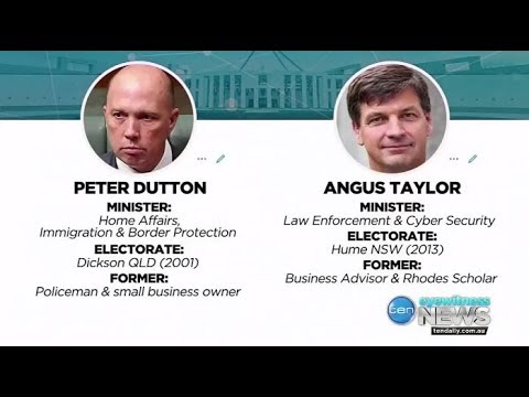 The NEG rebellion: Peter Dutton suggests Angus Taylor for leader