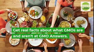 What is GMO Answers
