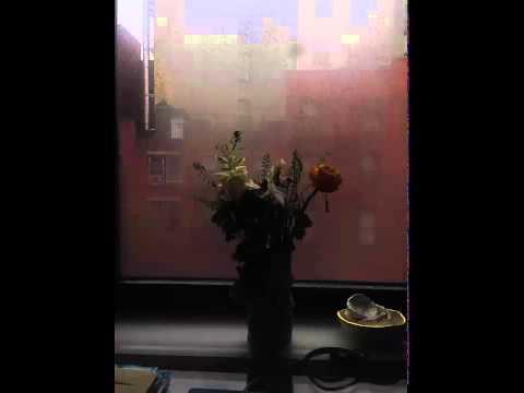 Remembrance 13 | Jefre Cantu Ledesma