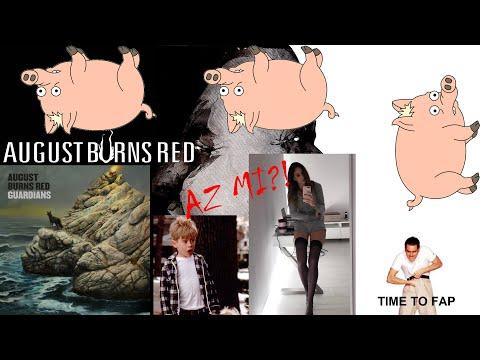 SÍRNI AKAROK A MOSHPIT KÖZEPÉN! | August Burns Red - Guardians (2020)