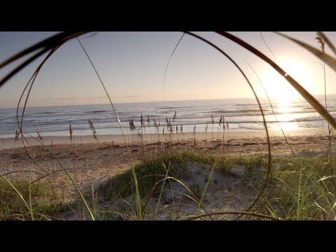 Hidden Gem: Gamble Rogers at Flagler Beach