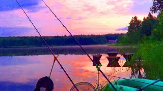 Рыбалка на Лесном Озере с НОЧЕВКОЙ  , Лещь и Плотва ✅
