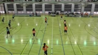 関東学連ハンドボール2017.4.15  vs昭和薬科大学①