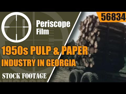 1950s PULP & PAPER INDUSTRY IN GEORGIA    PINE PACKS A PUNCH  MEAD CORPORATION  56834