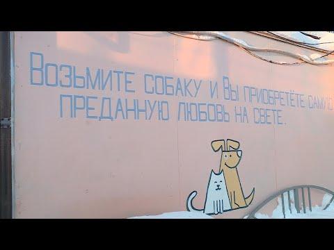 Андрей Воронов и общественники обсудили проблемы лохматых беспризорников