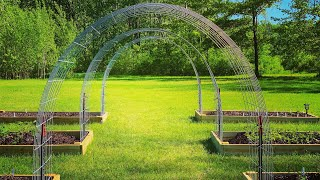My 12th Anniversary On YouTube: My Very First Garden Update / Spring 2019 / Raised Bed Gardening