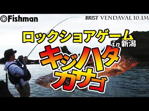 Fishman TV Light Game division vol.4