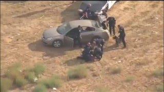 Полицейская погоня,Калифорния.К9