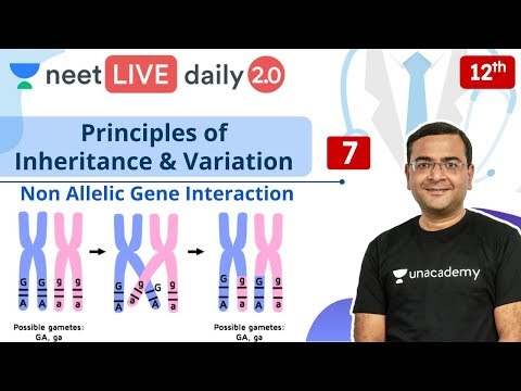 NEET: Principles of Inheritance & Variation - L7 | Live Daily 2.0 | Unacademy NEET | Pradeep Sir