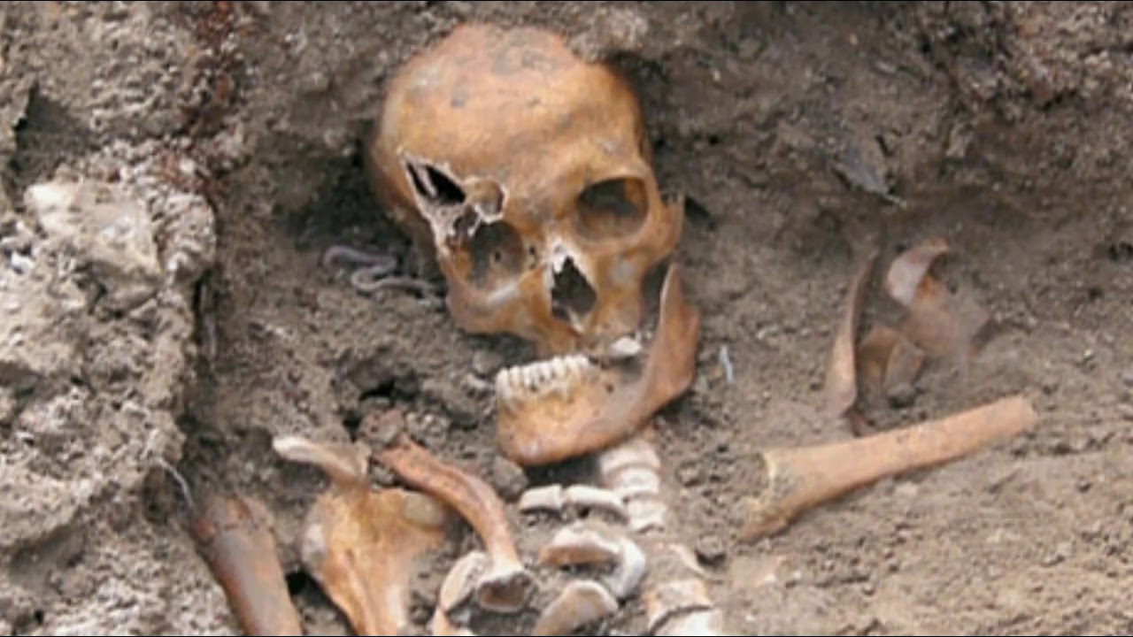 real giant human skeleton - youtube, Skeleton