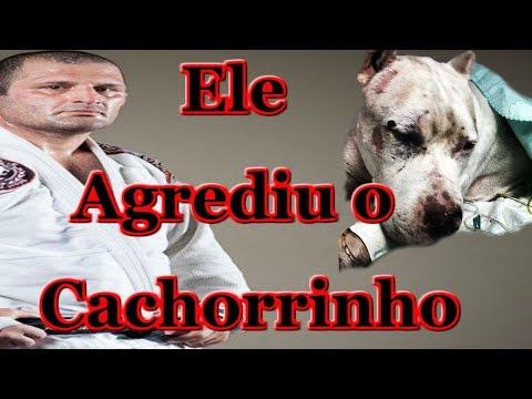 Ralph Gracie Agride Cachorrinho