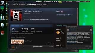 How to use tf2 plaza's raffle bot