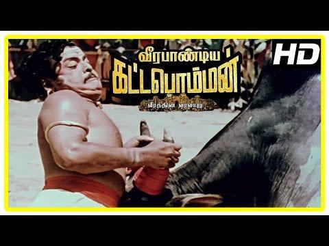 Veerapandiya Kattabomman Movie Scenes   Gemini Ganesan tames Padmini's bull   Sivaji Ganesan