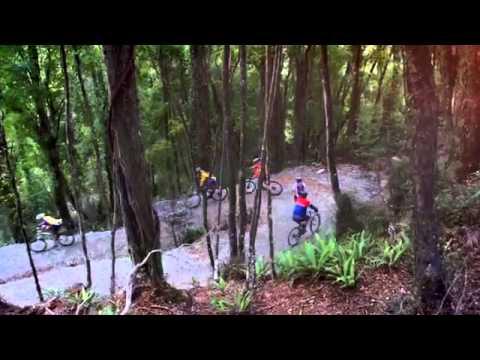 Hokitika   West Coast Wilderness Trail, a New Zealand Cycle Trail Great Ride