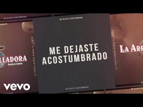 La Arrolladora Banda El Limón De René Camacho - Me Dejaste Acostumbrado (Lyric Video)