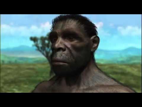 THE EVOLUTION OF THE HUMAN MIND - NOVA DOCUMENTARY - History Discovery Life (full documentary)