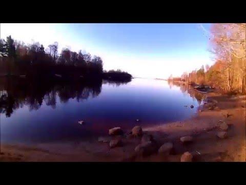 рыбалка на реке рощинка лен обл