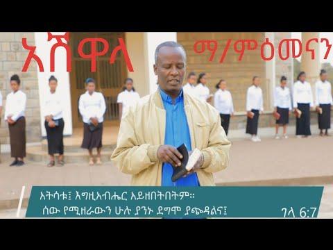 Download sisay ayele official Ashwala congregation